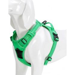 harnais chien réfléchissant vert