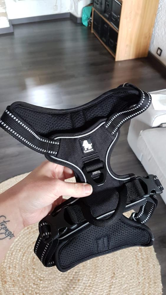 harnais reflechissant noir pour chien
