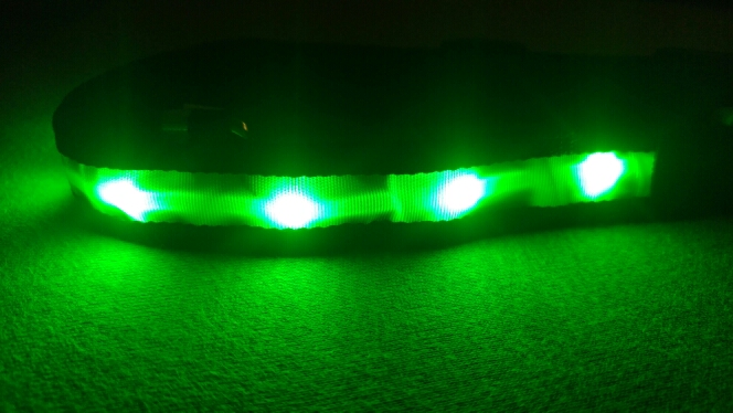 collier lumineux led chien